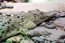 Naturaliste Reptile Park, Margaret River, Australia