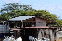 Aletta's Goat Farm, Bonaire