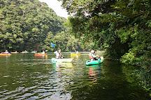 Anbo River, Yakushima-cho, Japan