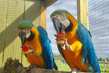 Chew Valley Animal Park, Chew Magna, United Kingdom