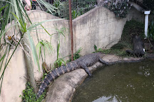 Dragon Rock Reptile Centre, Winterton, South Africa