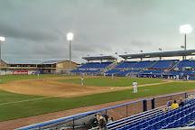 TD Ballpark, Dunedin, United States