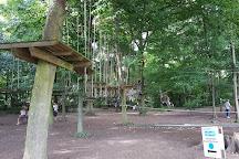 Chichoune Accroforest, Lesigny, France