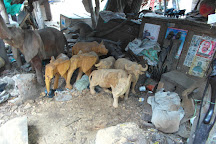 Akamba Handicraft, Mombasa, Kenya
