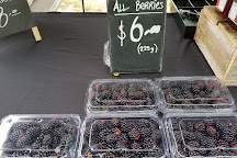 Mulgrave Farmers Market, Mulgrave, Australia