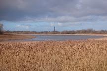 Marton Mere Local Nature Reserve, Blackpool, United Kingdom