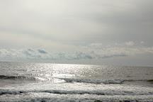 Lecount Hollow Beach, Wellfleet, United States