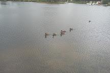 Rathbeggan Lakes, Dunshaughlin, Ireland