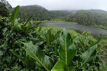 Grand Etang, Capesterre-Belle-Eau, Guadeloupe