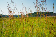 John Muir Memorial County Park, Montello, United States
