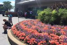 Niagara Falls Discovery Center, Niagara Falls, United States