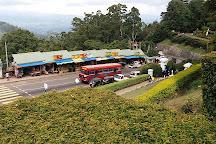 Hakgala Botanic Gardens, Nuwara Eliya, Sri Lanka