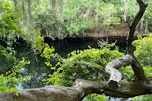Big Shoals State Park, White Springs, United States