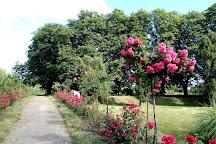 Grishko Central Botanical Garden, Kiev, Ukraine