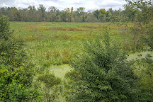 Dutch Gap Conservation Area, Chester, United States