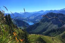 Alpine Garden La Rambertia, Montreux, Switzerland