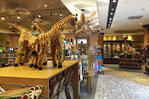 Houston Zoo, Houston, United States