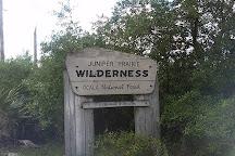 Juniper Prairie Wilderness, Ocala, United States