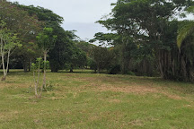 Jardin Botanico Nacional, Havana, Cuba