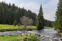 Sumava National Park, Bohemia, Czech Republic