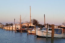 Island Queen Inland Charters, LLC, Chincoteague Island, United States
