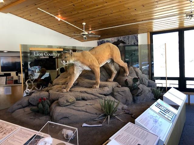 Chisos Basin Visitor Center