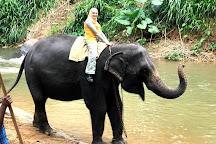 Aaliya Tours, Kandy, Sri Lanka