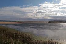 Playa de la Gola del Ter, Torroella de Montgri, Spain
