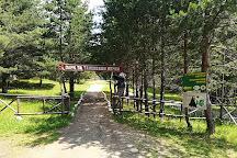 Dancing Bears Park, Belitsa, Bulgaria