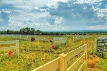 Eisenhower National Historic Site, Gettysburg, United States