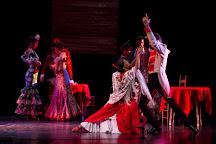 Ballet Flamenco de Madrid, Madrid, Spain