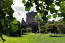 Blarney Stone, County Cork, Ireland