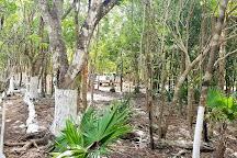 Cenote Jardin del Eden, Yucatan, Mexico