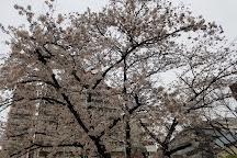 Horie Park, Osaka, Japan