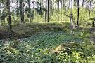 Alpo Jaakola Statuary Park