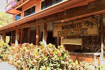 Wingnuts Canopy Tours, Playa Samara, Costa Rica