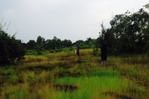 Kareem's Forest Park, Kasaragod, India