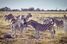 Etosha, Etosha National Park, Namibia