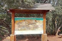 Cueva de Montesinos, Ossa de Montiel, Spain