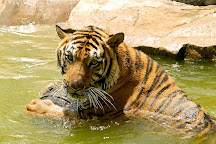 Songkhla Zoo, Songkhla, Thailand