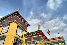 Tashi Jong Buddhist Monastery, Palampur, India