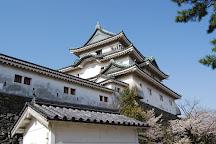 Wakayama Castle, Wakayama, Japan