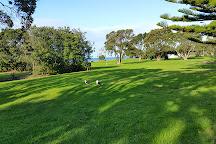 Long Bay Regional Park, Long Bay, New Zealand