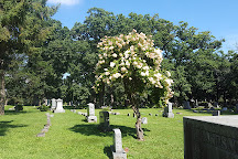 Forest Hill Cemetery, Madison, United States