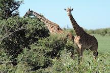 African Home Adventure Safaris, Nairobi, Kenya