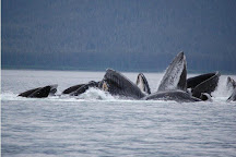 Alaska Shore Excursions, Juneau, United States