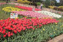 Umikaze Park, Yokosuka, Japan