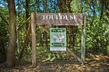 Toulouse Vineyards, Philo, United States