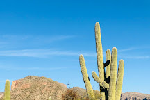 Sabino Canyon, Tucson, United States