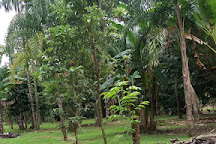 Pierella Ecological Garden, Horquetas, Costa Rica